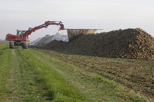 Mit weiten Auslegern kann vom Weg aus abgedeckt werden (Foto: Südzucker AG)